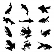 Link toAquatic organisms vector silhouettes free