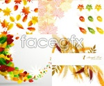 Link toAutumn elements vector
