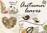 Link toAutumn leaves background vector