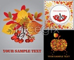 Link toAutumn leaves fall fruit vector