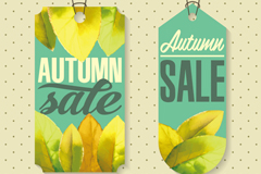 Link toAutumn leaves ornament sale tag vector