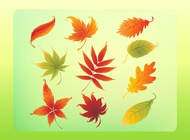 Link toAutumn leaves vector set free