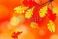 Link toAutumn maple leaf chinese restaurant background vector