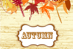 Link toAutumn maple leaf chinese restaurant wood grain background vector