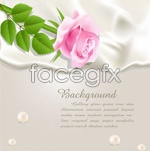 Link toBackground of rose champagne vector