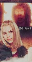Link toBad wolf 001