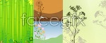Link toBamboo and flowers vector