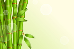 Link toBamboo background cartoon vector