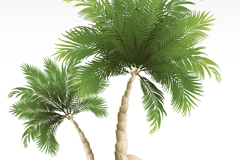 Link toBeach coconut tree vector background