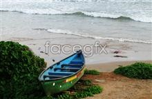 Link tomaterial picture scenery Beach
