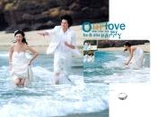 Link toBeach wedding psd photo templates