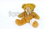 Link toBear doll 02 psd