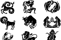Beautiful 12 zodiac signs icons design vector