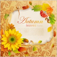 Link toBeautiful autumn leaves frame background 04 vector