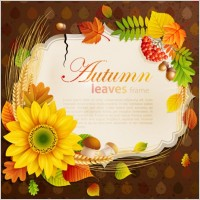Link toBeautiful autumn leaves frame background 06 vector