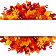 Link toBeautiful autumn leaves vector background graphics 02 free