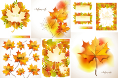 Link toBeautiful autumn maple leaf chinese restaurant design vector