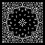 Link toBeautiful black and white background vector