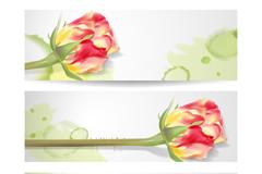 Link toBeautiful bud roses banner vector