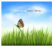 Link toBeautiful butterfly and green grass vector background 01
