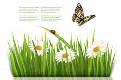 Link toBeautiful butterfly flower background vector