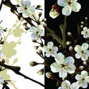 Link toBeautiful cherry drawn elements vector free