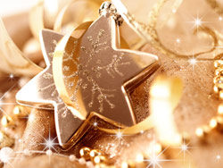 Link toBeautiful christmas design elements -88-hd pictures