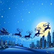 Link toBeautiful christmas night winter vector background 03
