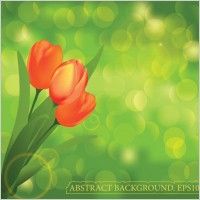 Link toBeautiful flower background vector