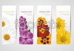 Link toBeautiful flower banner vector