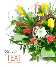 Link toBeautiful flower picture material