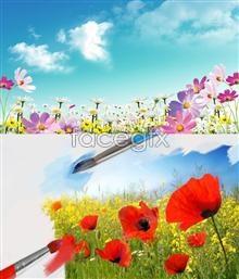 Link topsd flower Beautiful