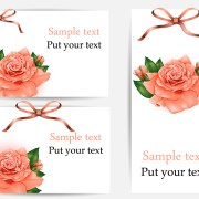 Link toBeautiful flower with ribbon cards vector graphic 03 free