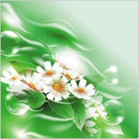 Link toBeautiful flowers 03 vector