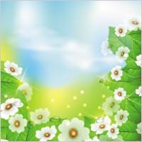 Link toBeautiful flowers 04 vector