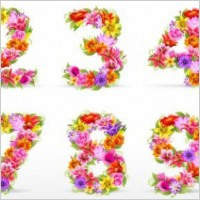Link toBeautiful flowers and figures 01 vector