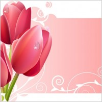 Link toBeautiful flowers and lace 01 vector