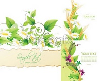 Link tovector insects leaf green background flowers Beautiful