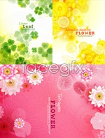 Link toBeautiful flowers, green leaves vector
