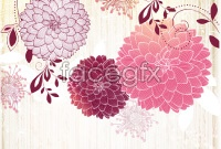 Beautiful flowers line draft background vector