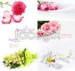 Link toBeautiful flowers psd