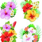 Link to05 vector flowers Beautiful