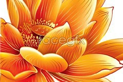 Link tovector flowers lotus golden Beautiful