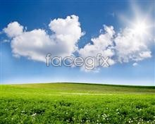 Link topicture scenery grassland Beautiful