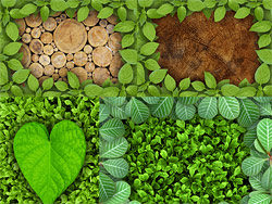 Link toBeautiful green leaf border hd pictures