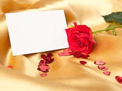 Link toBeautiful greeting cards 03-hd pictures