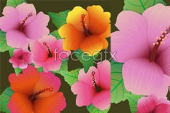 Link toBeautiful hibiscus flower close-up vector