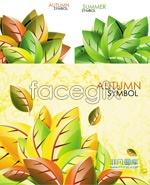 Link toBeautiful leaf leaf vector