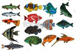 Link toBeautiful life-like marine fishes vector