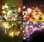Link toBeautiful light flowers vector